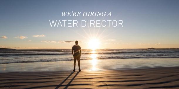 moen_water_director